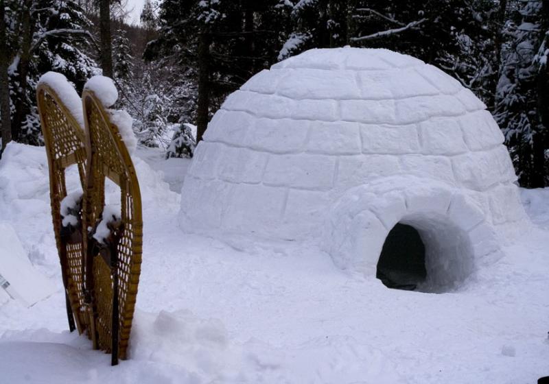 Camp d'hiver 2020
